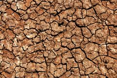 Terra. The texture of the ground Stock Photography