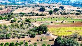 Terra agrícola com árvores de fruto, pilhas de feno e uma condução de carro em uma estrada de terra fotos de stock royalty free