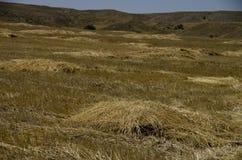 Terra agrícola da vista no vale sul de Cappadocia imagem de stock royalty free