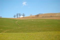 Terra arável Fotografia de Stock