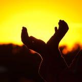 Terra arrendada da menina nas mãos o sol de ajuste Imagens de Stock Royalty Free