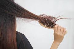 Terra arrendada da mulher que penteia com escova e cabelo longo limpo, conceito de Haircare imagens de stock