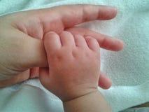 A terra arrendada do bebê sere de mãe ao polegar Imagens de Stock