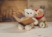 Terra arrendada e leitura do brinquedo do urso um livro Fotografia de Stock