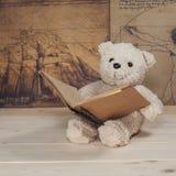 Terra arrendada e leitura do brinquedo do urso um livro Foto de Stock Royalty Free