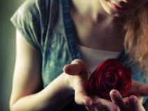 Terra arrendada Rosa da menina Imagens de Stock