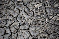 Terra asciutta con le crepe Fotografie Stock Libere da Diritti
