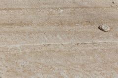 Terra asciutta con roccia Fotografie Stock