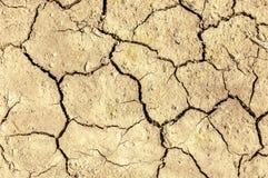 Terra asciutta del deserto con le crepe dappertutto Immagini Stock