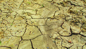 Terra asciutta incrinata Fotografia Stock Libera da Diritti