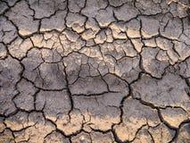 Terra asciutta incrinata del primo piano Immagini Stock