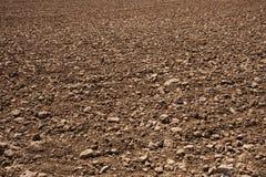 Terra asciutta lavorata Fotografia Stock