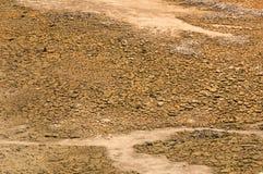 Terra asciutta nella crisi di siccità Immagini Stock Libere da Diritti