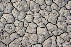 Terra bruciacchiata Fotografie Stock