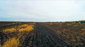 Terra bruciata nel campo stock footage