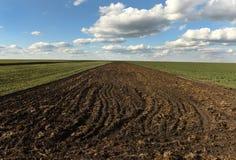 Terra, campo arado na mola, paisagem, agrícola, campos Imagem de Stock Royalty Free
