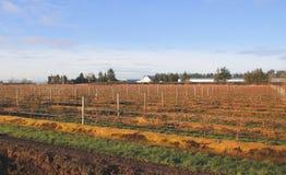Terra canadese dell'azienda agricola della costa ovest Fotografie Stock Libere da Diritti