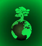 Terra com árvore Fotografia de Stock Royalty Free
