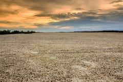 Terra com terra seca e rachada Deserto fotografia de stock
