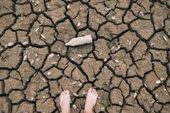 Terra con asciutto Immagine Stock