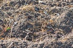 Terra con fertilizzante Fotografia Stock Libera da Diritti