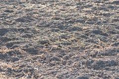 Terra con fertilizzante Immagini Stock Libere da Diritti
