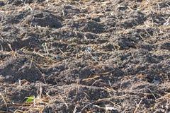 Terra con fertilizzante Immagine Stock Libera da Diritti