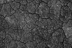 Terra con la crepa Fotografie Stock