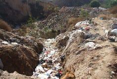 Terra contaminata Fotografie Stock