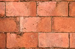 Terra cotta brick floor Royalty Free Stock Images