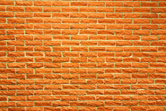 Terra cotta brick wall. Another great brick wall background, orange terra cotta color Stock Photos