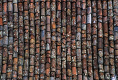 Terra cotta roof tiles Stock Image