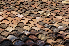 Terra cotta roof tiles Stock Photo