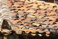 Terra cotta roof tiles Royalty Free Stock Photography