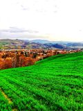 Terra cultivada e grama verde nova da mola em ondular o terreno montanhoso fotos de stock royalty free