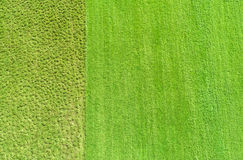 Terra cultivada e silvestre Fotografia de Stock
