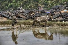 Terra cultivada, fazendeiro atrás de um arado que puxe o cavalo, porcelana Imagem de Stock Royalty Free