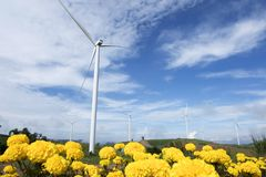 Terra das turbinas eólicas para gerar a eletricidade em 3Sudeste Asiático fotografia de stock
