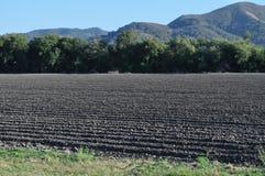 Terra de exploração agrícola Imagem de Stock