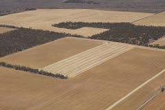 Terra de exploração agrícola Imagens de Stock Royalty Free