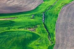 Terra de exploração agrícola Foto de Stock Royalty Free