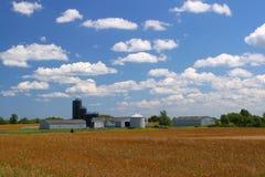 Terra de exploração agrícola americana Fotos de Stock
