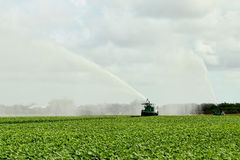 Terra de exploração agrícola da irrigação - 5 Imagem de Stock Royalty Free