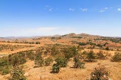 Terra de Madagáscar Imagens de Stock