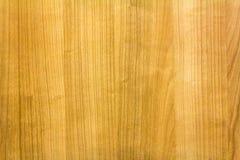 Terra de madeira Fotografia de Stock
