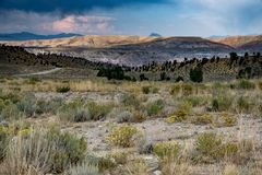 Terra de pastagem alta do deserto imagem de stock