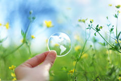 Terra de vidro nas flores Foto de Stock