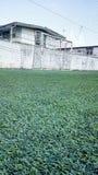 Terra del campo di calcio Immagini Stock