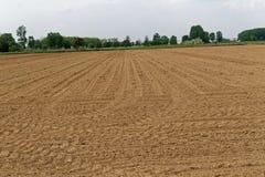 Terra dell'aratro che prepara terreno al raccolto Fotografie Stock Libere da Diritti