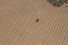 Terra dell'azienda agricola Fotografia Stock